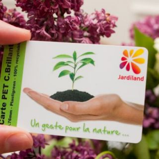 Carte PET (biodégradable)